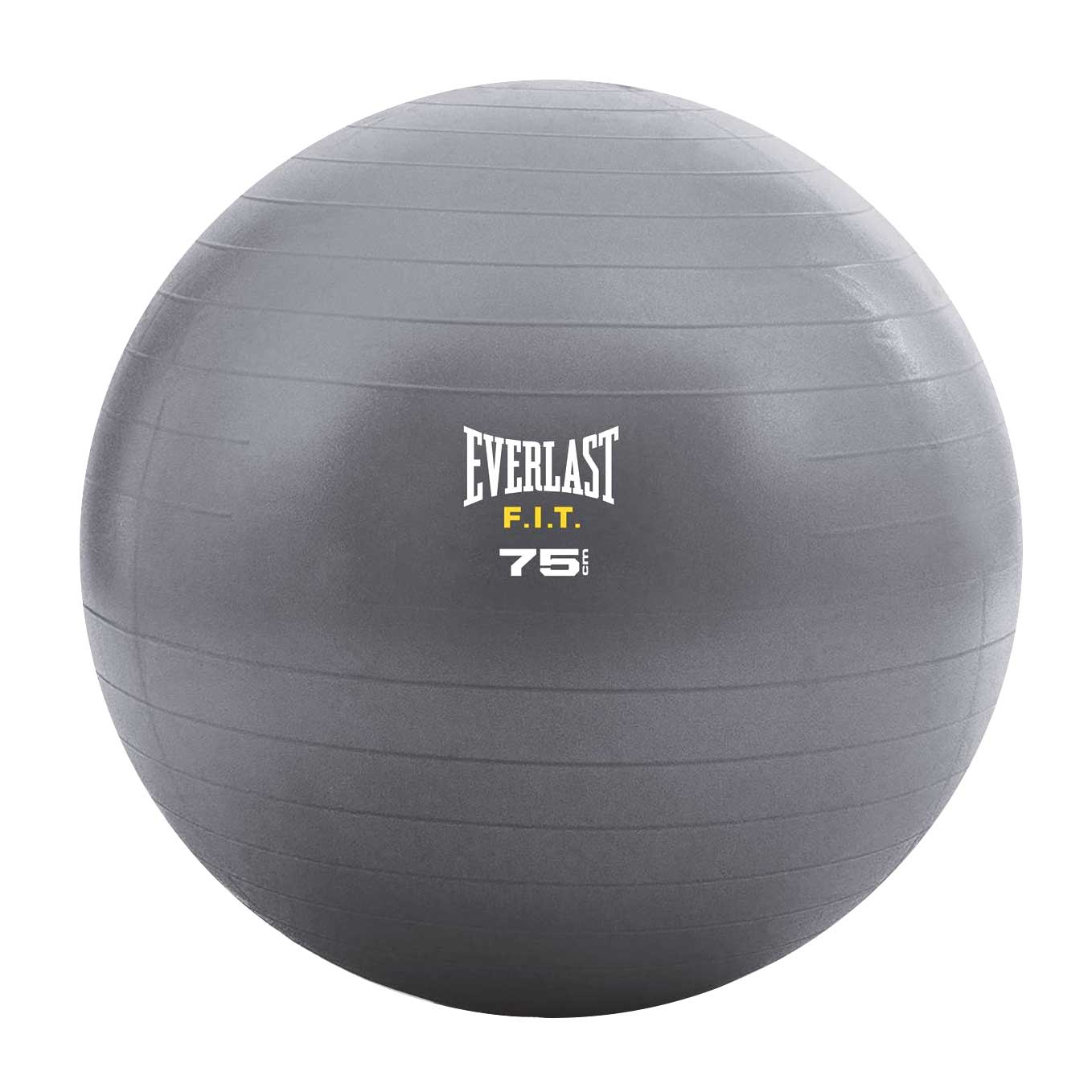 Everlast Stability Ball